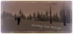Pocztówka z Bastogne