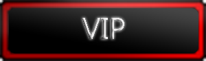 team_VIP.png